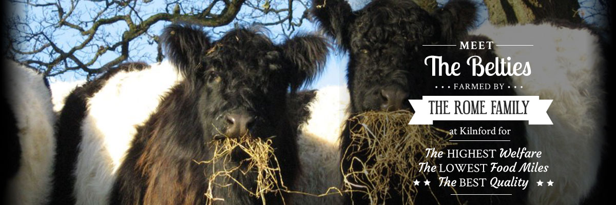 meet-the-belties-2